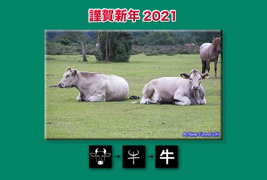 newyear2021.jpg