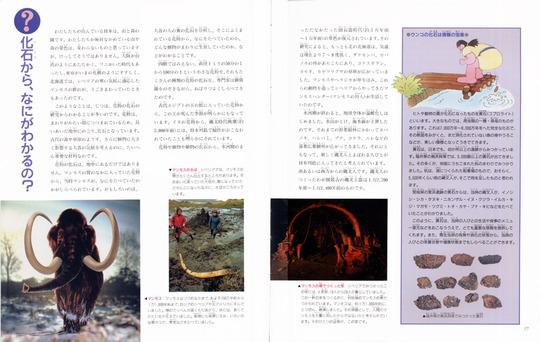 fossil10.jpg
