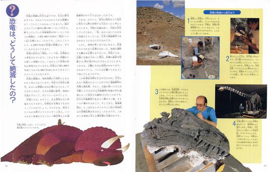 fossil11.jpg